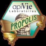 ApiVie logo